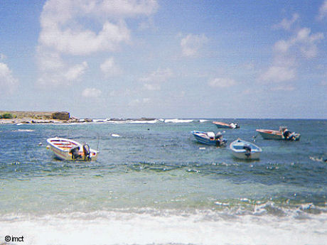 barques de peche